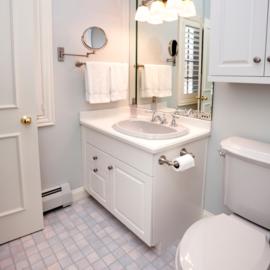 Bathroom germs